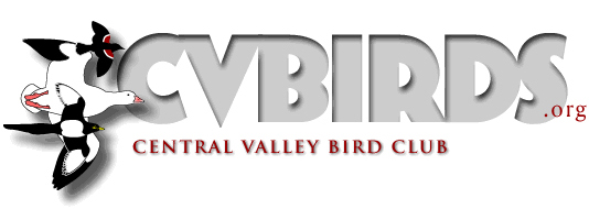 central valley bird club