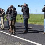 CV Bird Club/Altacal Audubon Butte County Field Trip