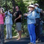 CV Bird Club/Atacal Audubon Butte Meadows Field Trip